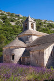 Sénanque Abbey in Provence — Stock Photo