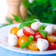 Caprese Salad — Stock Photo #37427927