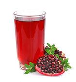 сок граната и плодов граната — Стоковое фото