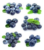 Collage of blueberries — Stock Photo