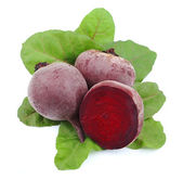 Young beet with leaves — Stock Photo