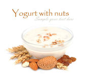 Yogurt with nuts — Stock Photo