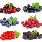 Sweet berries — Stock Photo #15348569