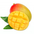 Mango fetus fruit — Stockfoto #17350543