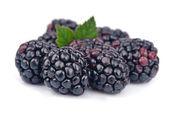 Juice blackberry fruit — Stock Photo