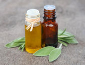Oil of sage herbs and rasemary — Stock Photo