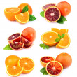 Set of sweet orange fruit — Stock Photo #18185721
