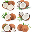 Постер, плакат: Collection of coconuts