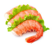 Shrimps with green salad — Stock Photo
