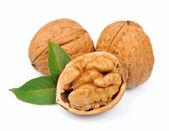 Dried walnut — Stock Photo