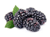 Sweet and juice blackberry fruit — Stock Photo