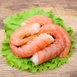 Stock Photo: Shrimps close up