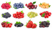Set of berry — Stock Photo
