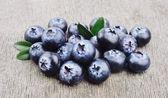 Blueberries — Foto Stock
