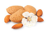 Almonds with flowers — Stock Photo