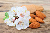 Almonds with leaves and flowers — Stock Photo