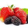 Ripe strawberry and mulberry — Stock Photo
