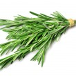 Stock Photo: Twig of rosemary