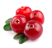 Sweet cranberries close up — Stock Photo
