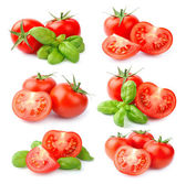 Set of tomatoes  — Stock Photo