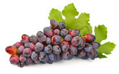 Grapes with leafs — Stock Photo