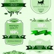 Eco labels with retro vintage design. Vector illustration — Imagens vectoriais em stock