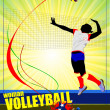Women volleyball poster. Volleyball player. — Stock Vector #34949909