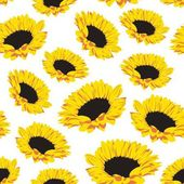 Seamless pattern of sunflowers — Stock Vector