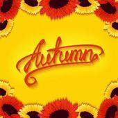 Autumn sunflowers — Stock Vector