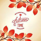 Autumn card design — Stock Vector