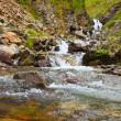 Mountains stream — Stock Photo #13644928