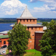 Kremlin wall at Nizhny Novgorod in summer — Stock Photo #13645554