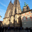 Saint Vitus Cathedral  in Prague - Stockfoto