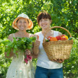 happy women with  harvested vegetables  — Photo