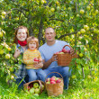 Royalty-Free Stock Photo: Happy family with  harvested apples