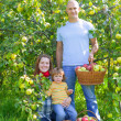 Happy family with apple harvest — Stock Photo #13665620