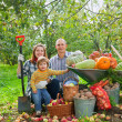 Happy  family with vegetables harvest - Stock Photo