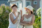Happy women near fence wicket — Stock Photo