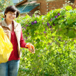 Female gardener fertilizes the soil — Stock Photo