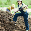Stock Photo: Women throws manure