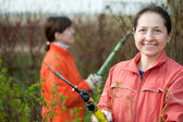 Women pruned branches in the garden — Stock Photo