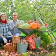 Family with harvest in garden — Stock Photo