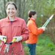 Gardeners working in spring garden - Stock Photo