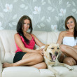 Royalty-Free Stock Photo: women with  labrador retriever  on sofa