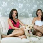 Women with labrador retriever on sofa — Stock Photo #15262275