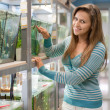 Woman near aquariums with fishes — Stock Photo