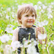 Two-year child at dandelion meadow — Stock Photo