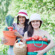 Women with harvested vegetables — Stock Photo #15262653