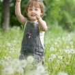 Two-year baby girl in  dandelions — Stock Photo