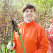 Women cutting shrubbery at garden - Stock Photo